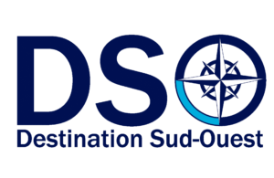 agence-web-dso-logo